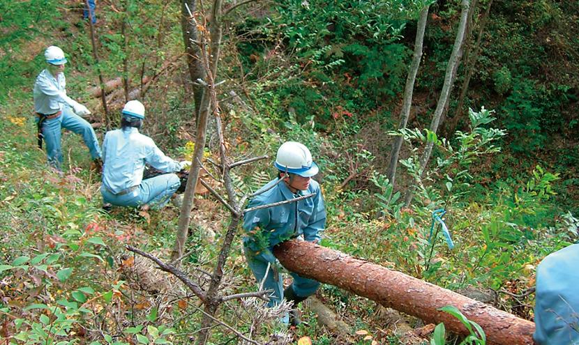 積水の森 森林整備活動